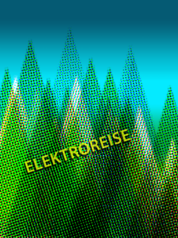 Flyer-Design-Elektroreise